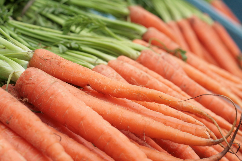 All things ginger: Carrot