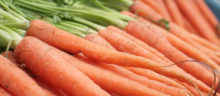 All things ginger: Carrot